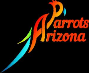 arizonaparrots.com